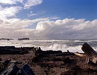 Bandon Or 1995 413 Beach